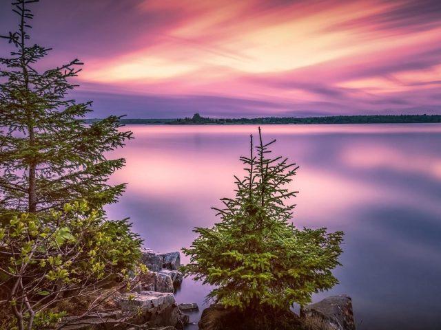 Национальный парк США Озеро с елями во время заката природа