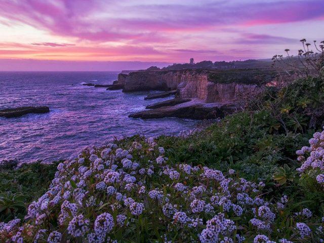 Пейзажный вид на побережье под пурпурно-желтым облачным небом природа