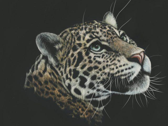 Леопард художественная краска