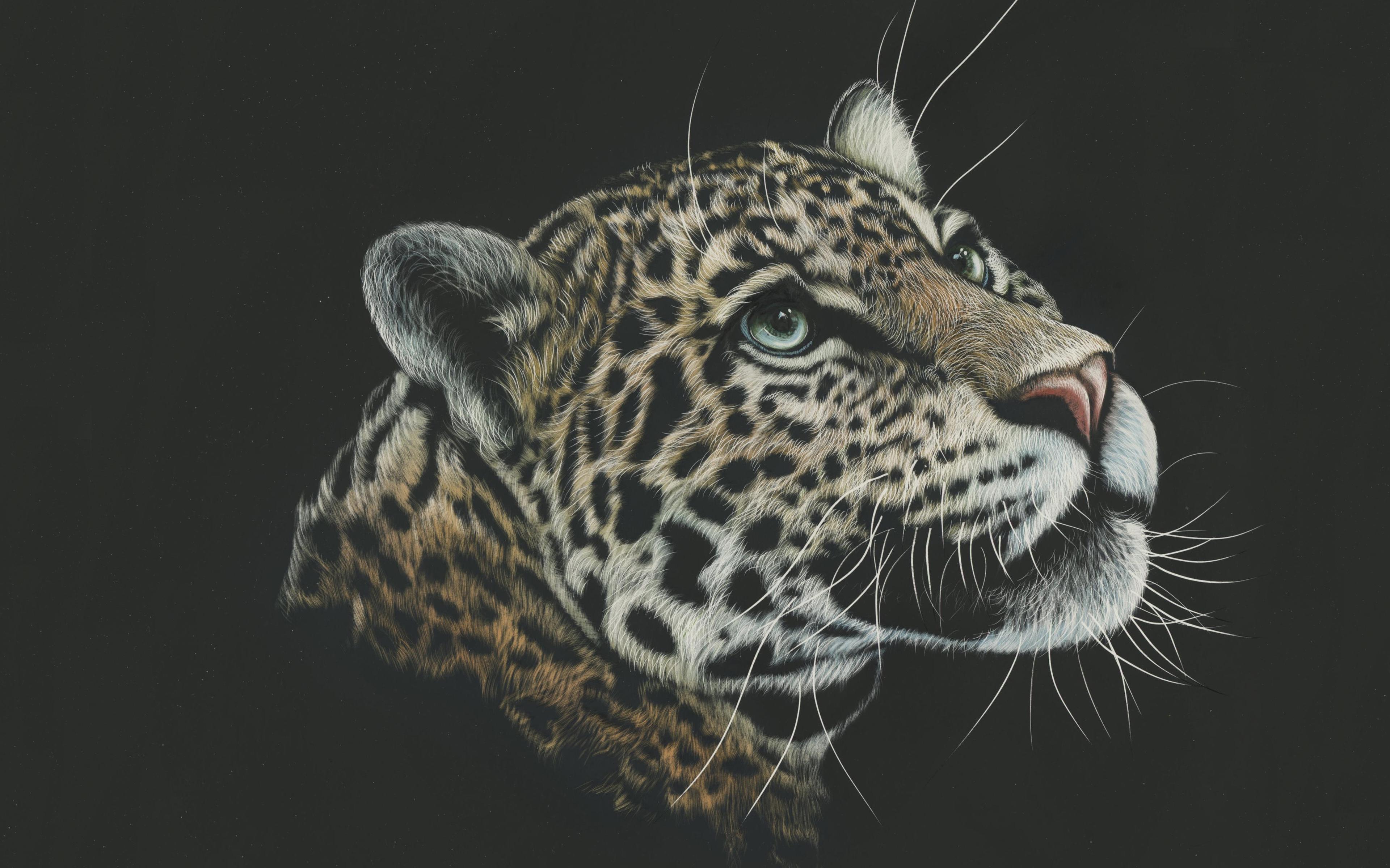 Леопард художественная краска обои скачать