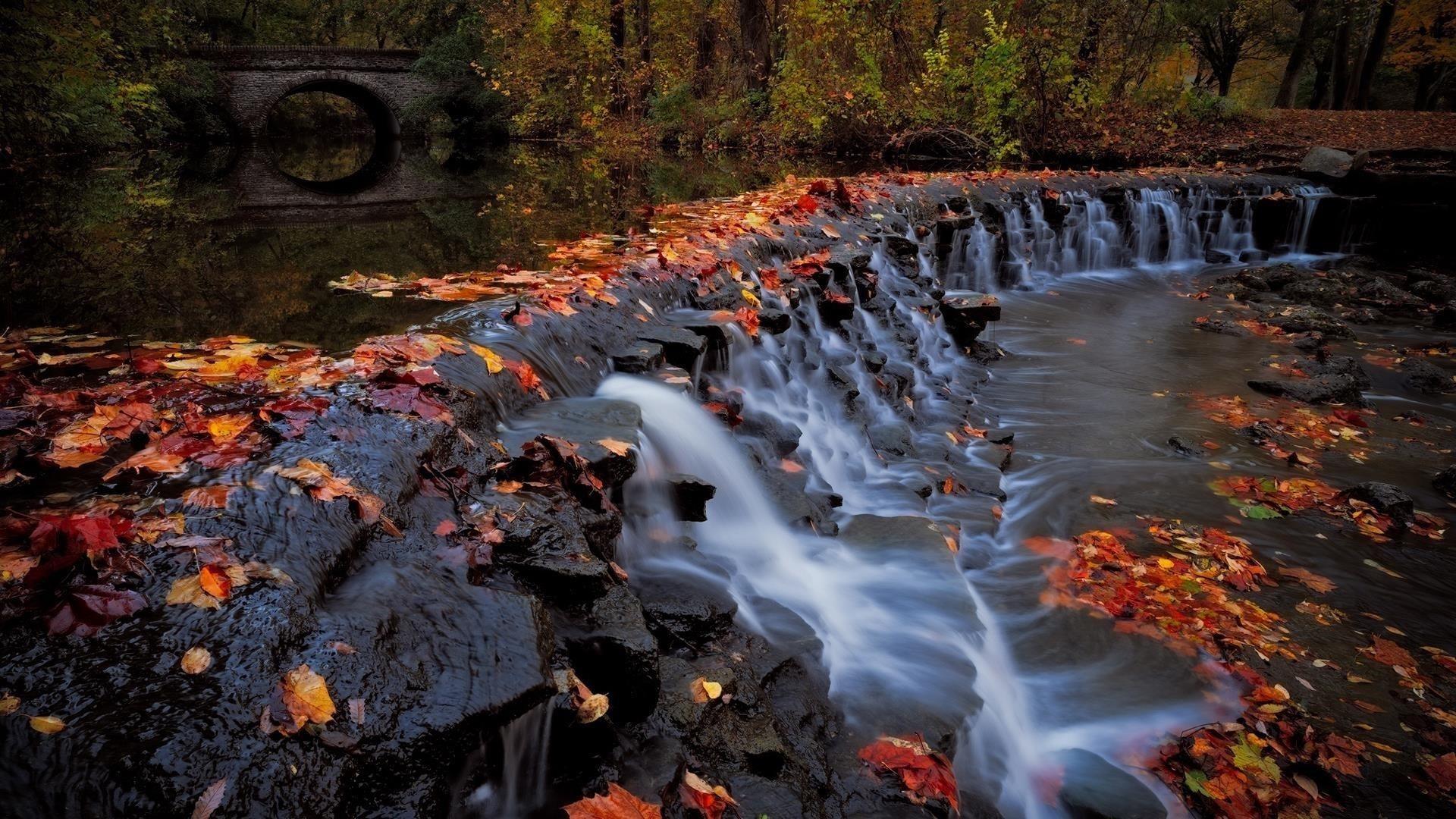 Водопад и листва деревья в лесу и мост во время осенней природы обои скачать