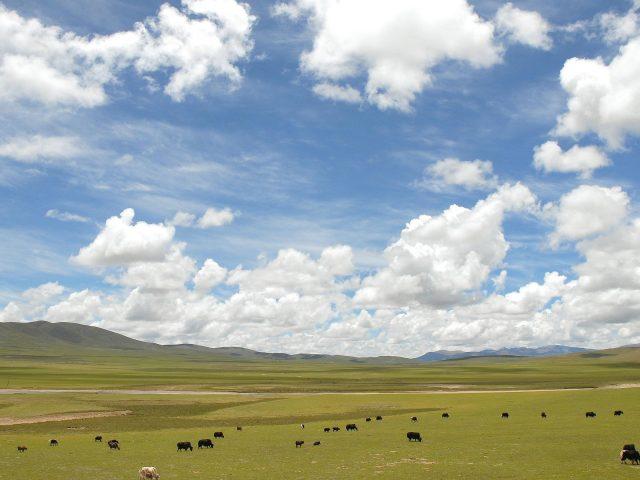 Голубые и белые облака под горами с зеленым полем в дневное время природа