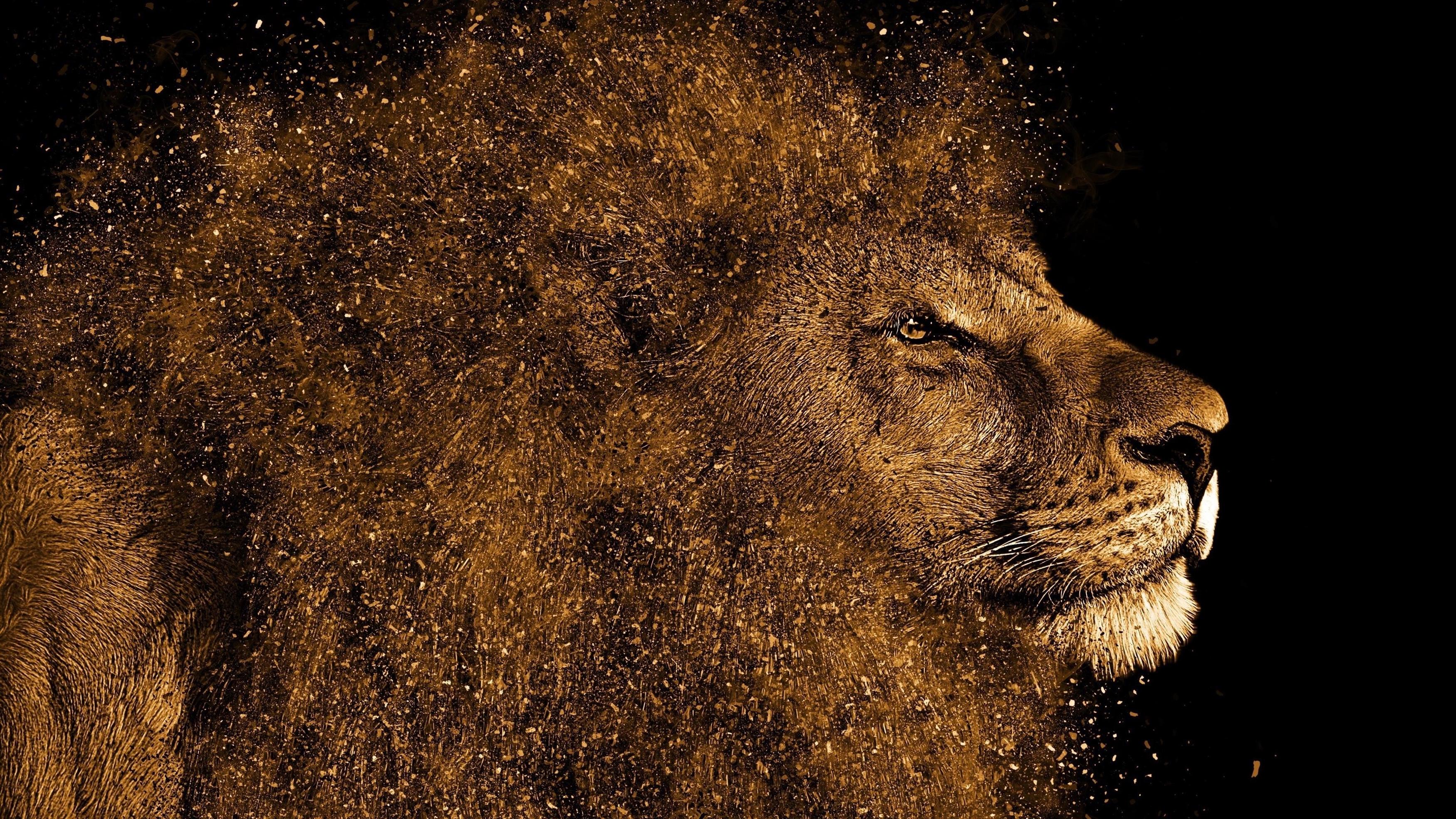 Искусство Льва обои скачать