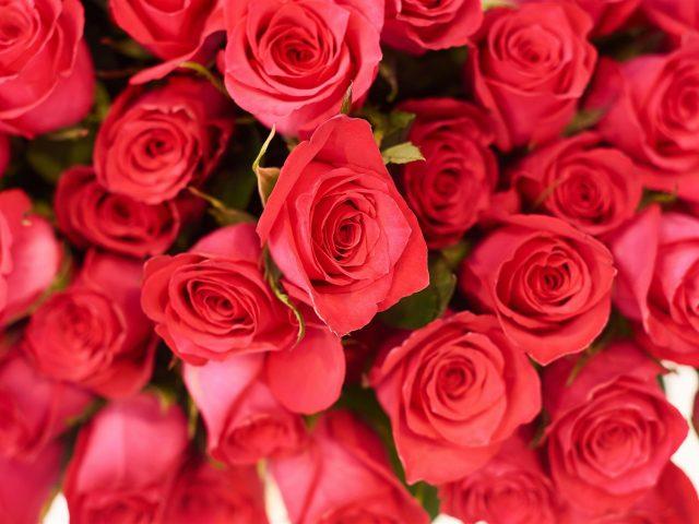 Искусственный цветок розы