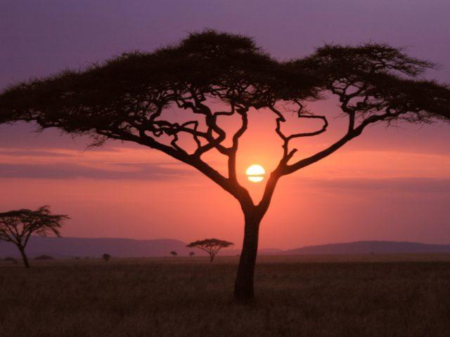 Африканский закат.
