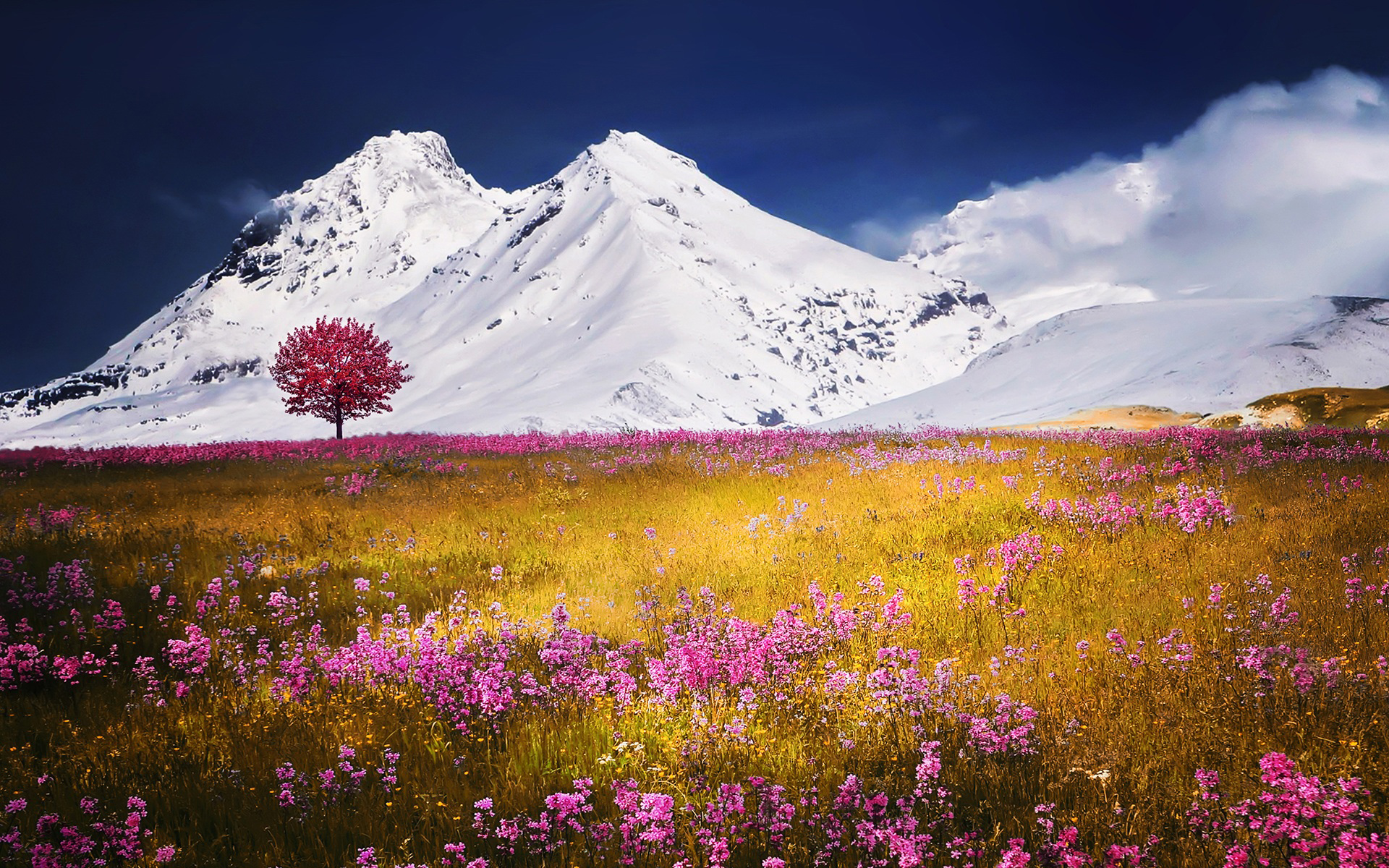 Осенние Альп поля. обои скачать