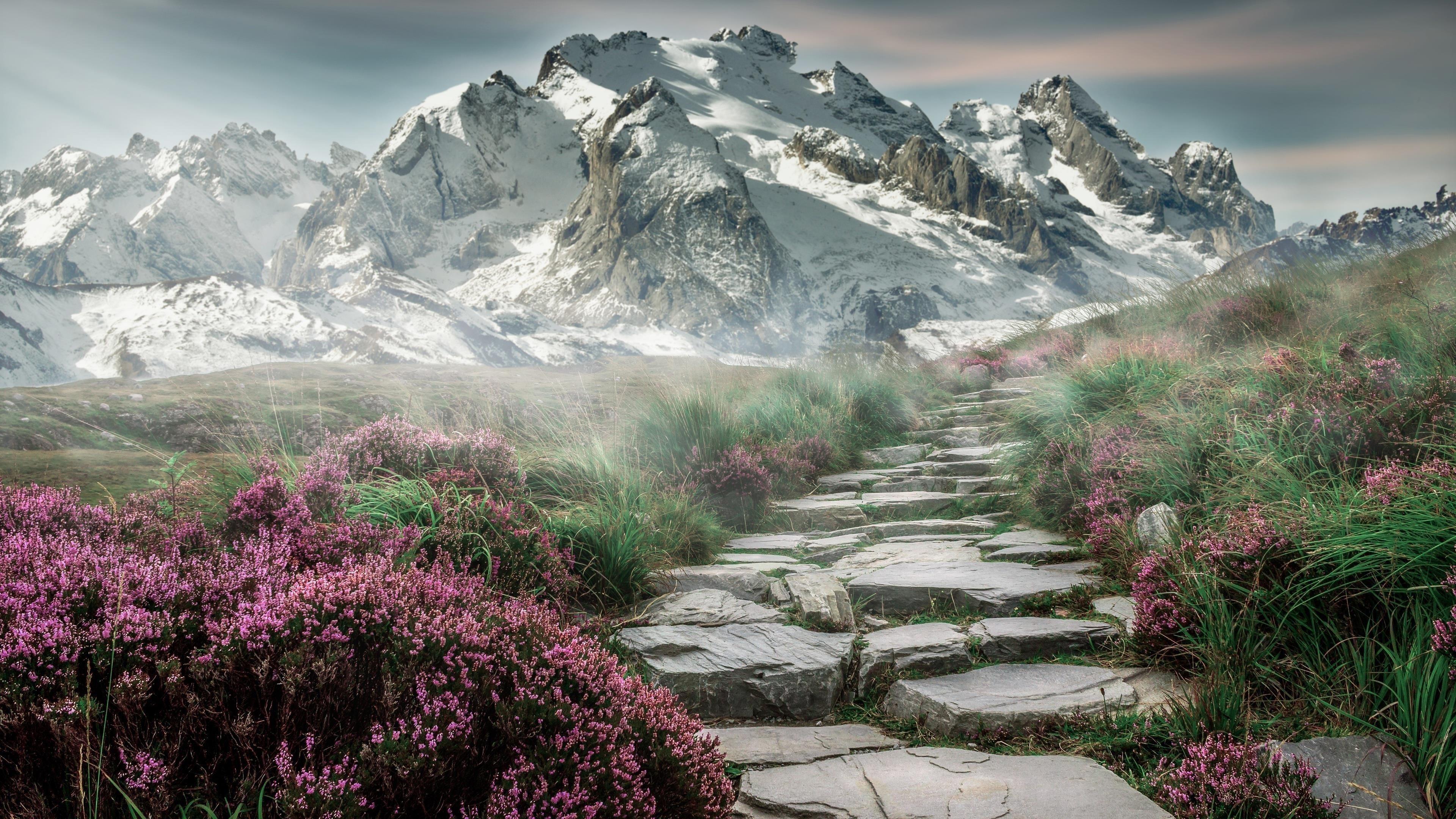 Туман горы дорога небо снег природа обои скачать