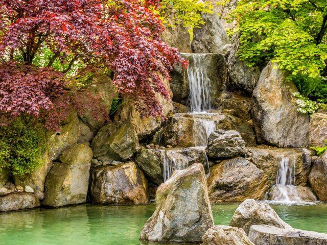 Водопад льется на пруд между красочными осенними деревьями в дневное время природа