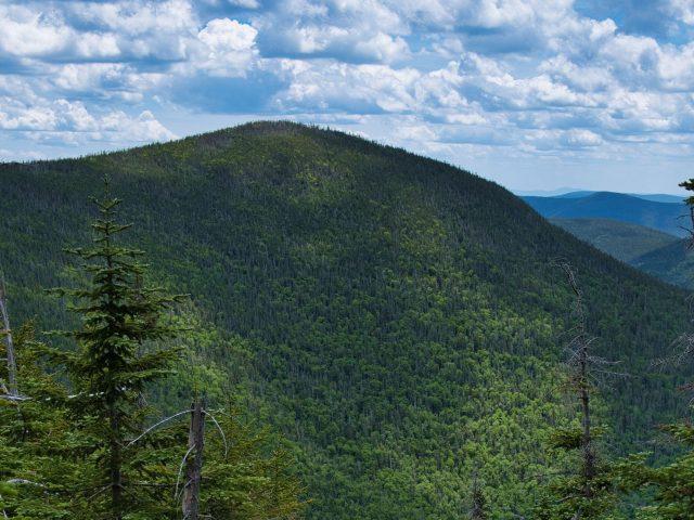 Склон покрыт зелеными деревьями горы лес под белыми облаками голубое небо природа