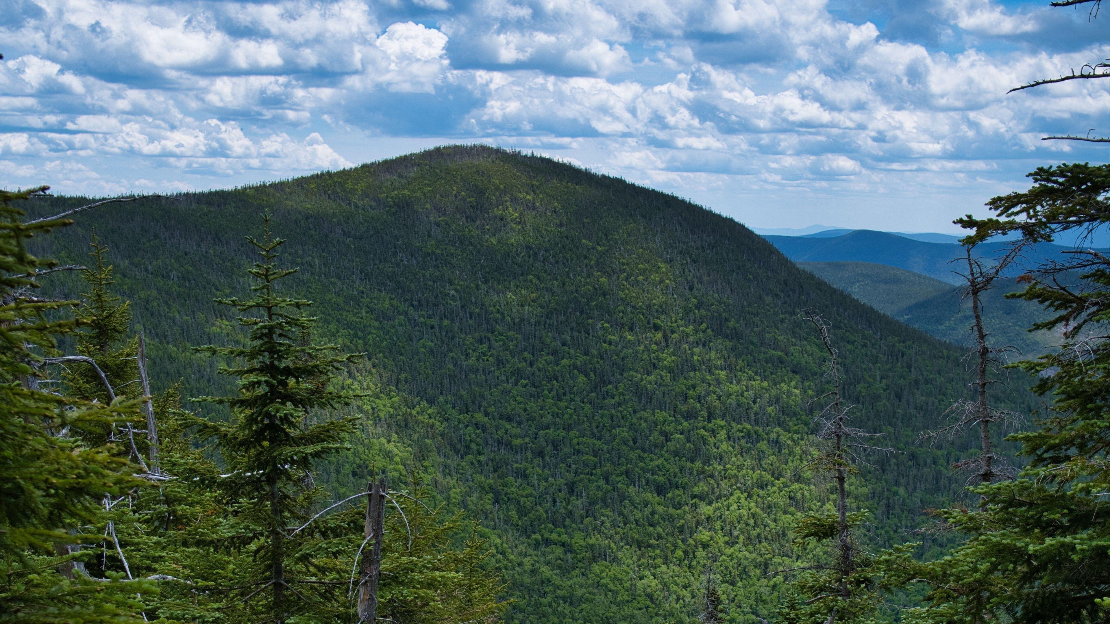 Склон покрыт зелеными деревьями горы лес под белыми облаками голубое небо природа обои скачать