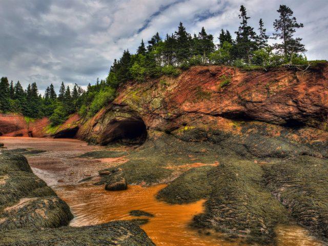 Пейзажная фотография реки между пещерами вокруг зеленых деревьев природа