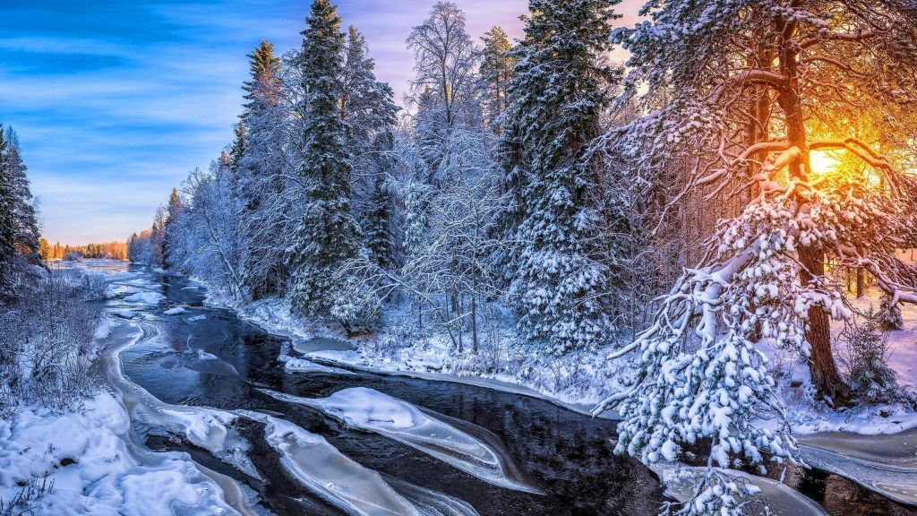 Заснеженные деревья лес и река замерзли во время восхода солнца природа обои скачать