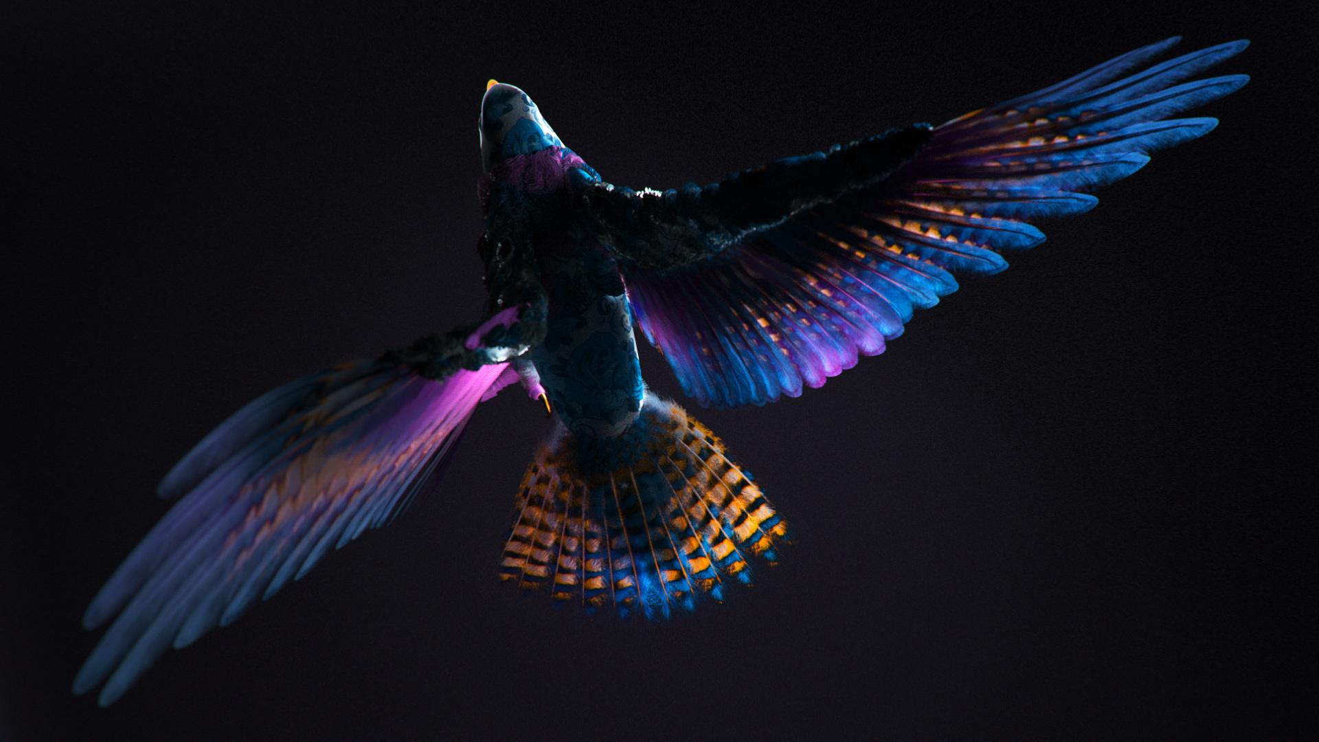 Цветастая птица cgi обои скачать