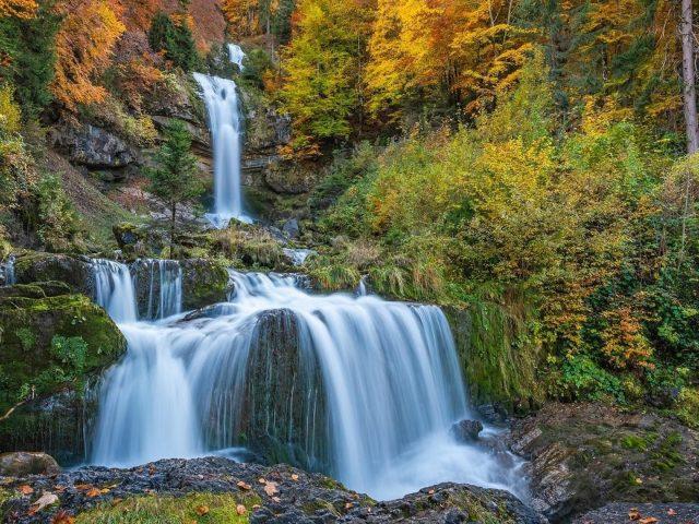 Водопады в лесу и листве деревьев природа