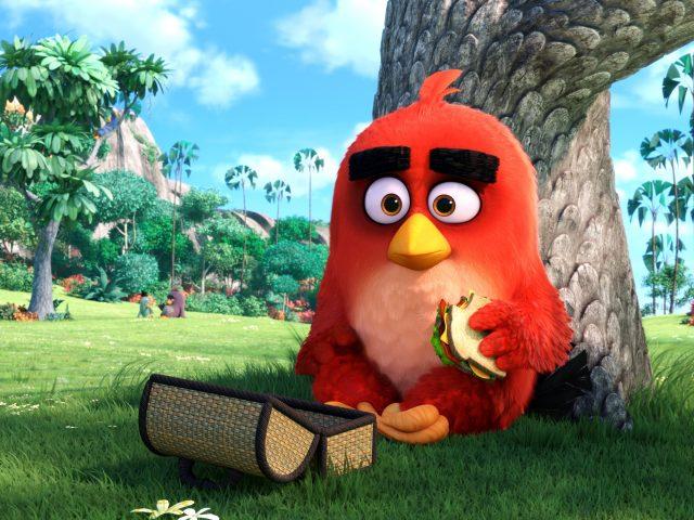 Красный сердиться птиц.