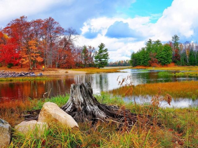 Красочные осенние деревья отражение на озере под облачным голубым небом природа